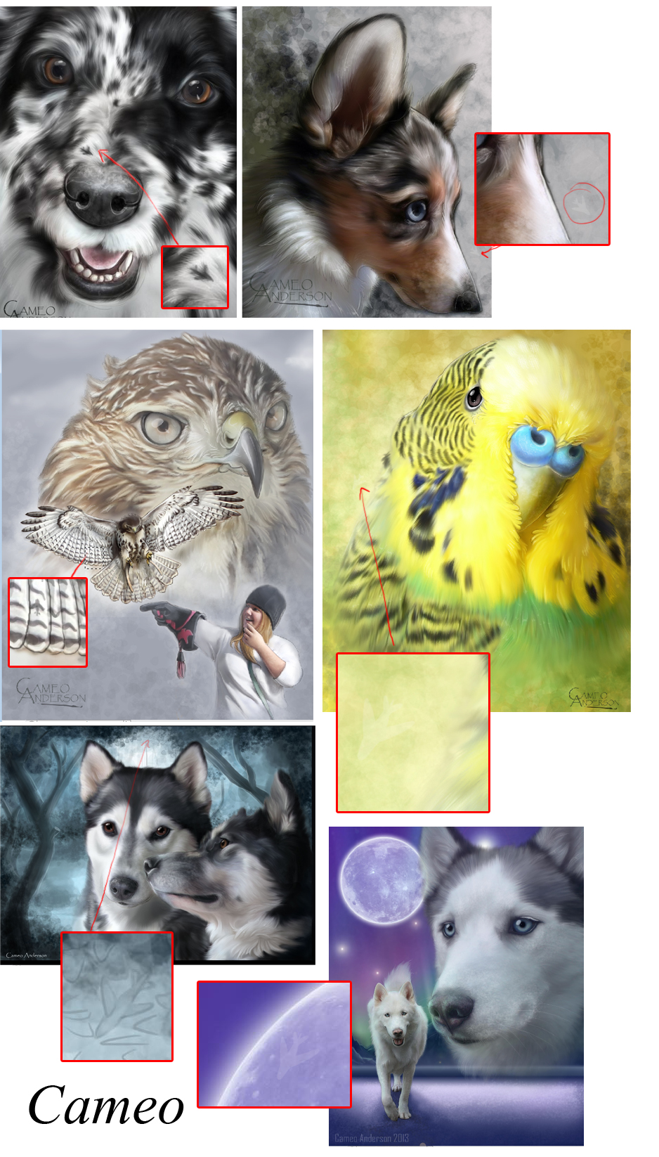 A graphic showing where Cameo hid some messages and images in pet portrait paintings.