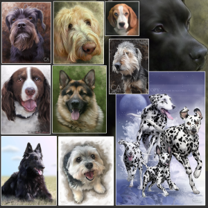 A collage of dog portraits painted by artist Cameo Anderson