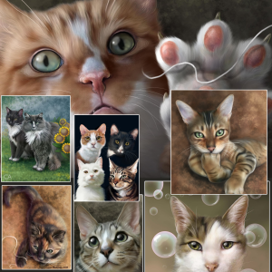 Kitties, cats, kittens, furry playful pet portraits.