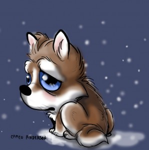 A husky sits alone outside with big sad blue eyes.